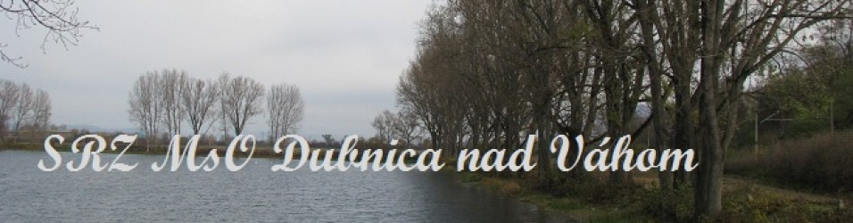 SRZ MsO Dubnica nad Váhom
